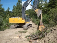Twin Buttes Timber Removal